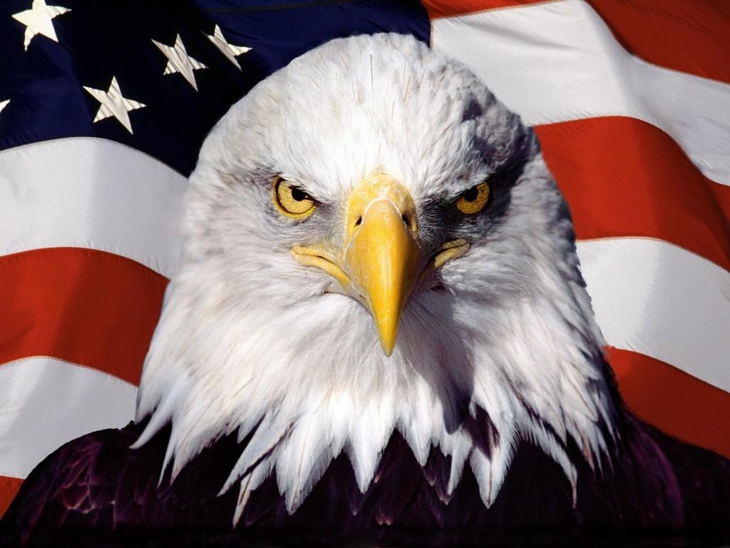 Открытое правительство США
