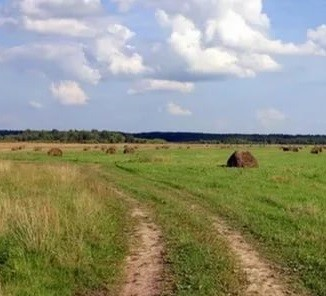 село трава непаханое поле