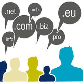 Регистратуры обратились к соцсетям с просьбой поддержать домены на национальных языках