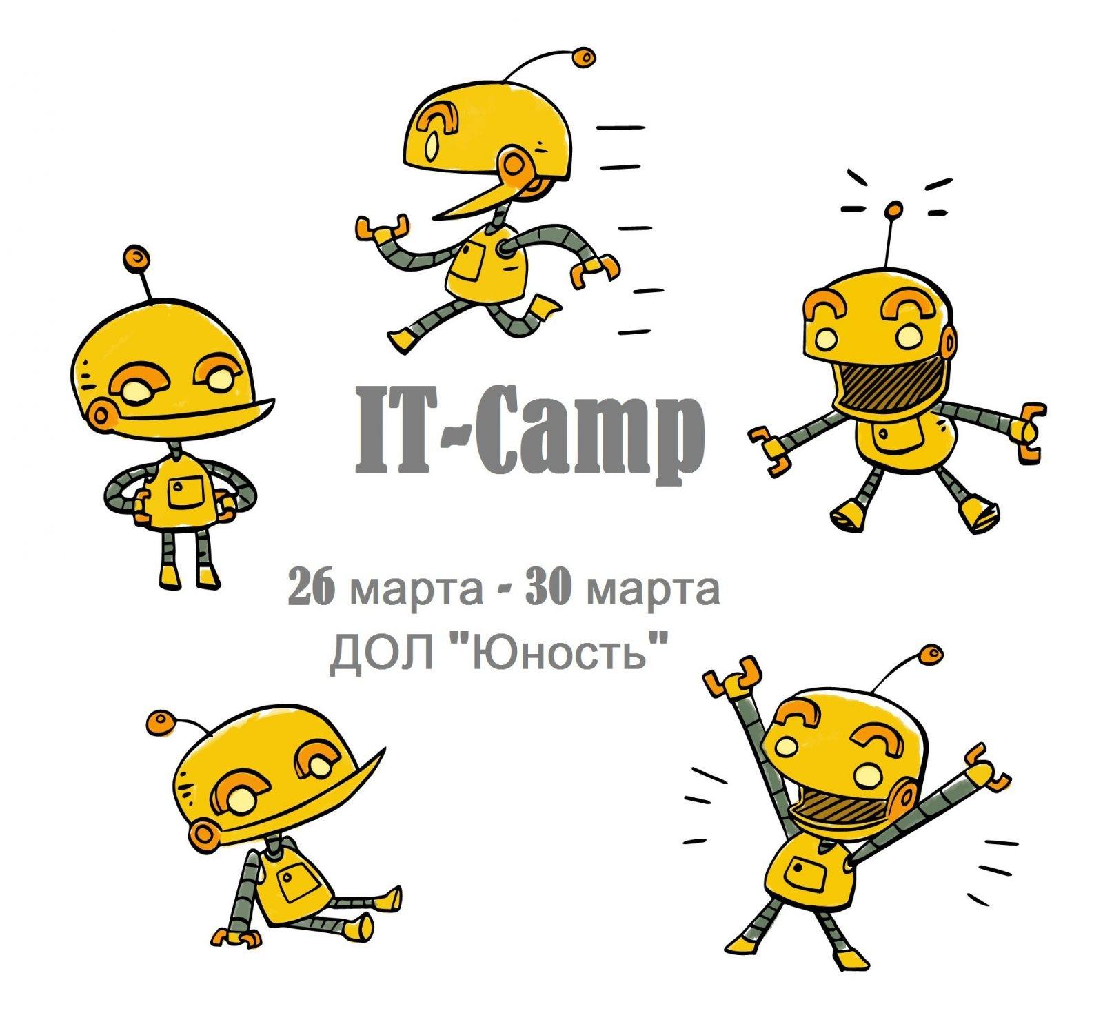 В Белгороде организуют IT-лагерь для школьников